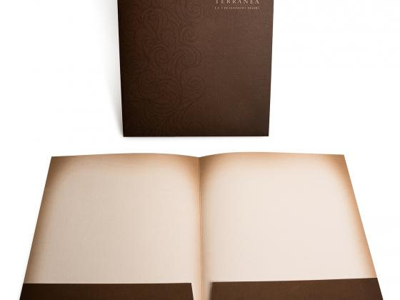 offset, presentation folder, die cut, metallic ink